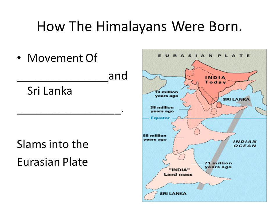 How The Himalayans Were Born. Movement Of _______________and Sri Lanka _________________.