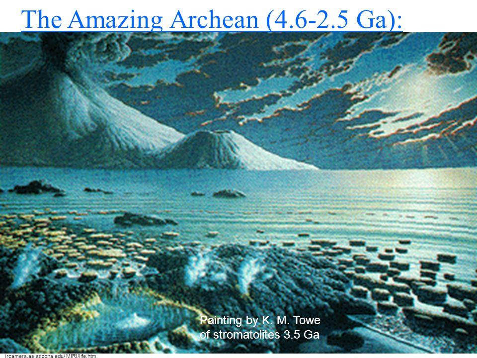 Precambrian (Archean and Proterozoic) rocks are underlying much of North America! http://www.paccd.cc.ca.us/instadmn/physcidv/geol_dp/dndougla/home/DR