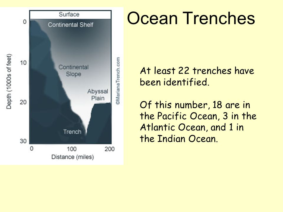 At least 22 trenches have been identified. Of this number, 18 are in the Pacific Ocean, 3 in the Atlantic Ocean, and 1 in the Indian Ocean. Ocean Tren