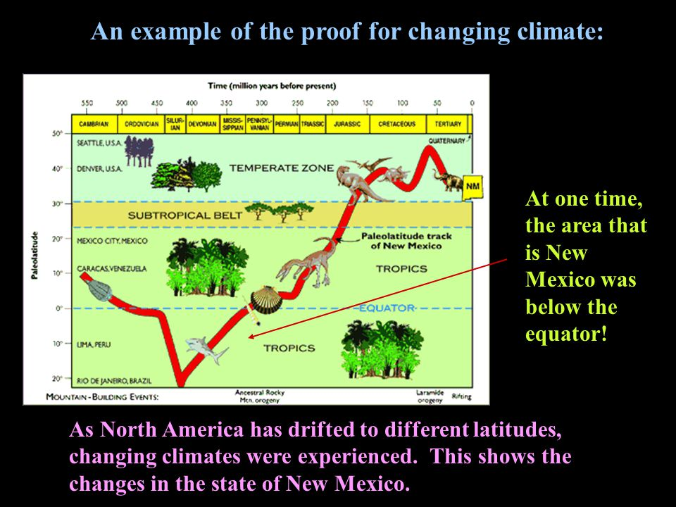 As North America has drifted to different latitudes, changing climates were experienced.