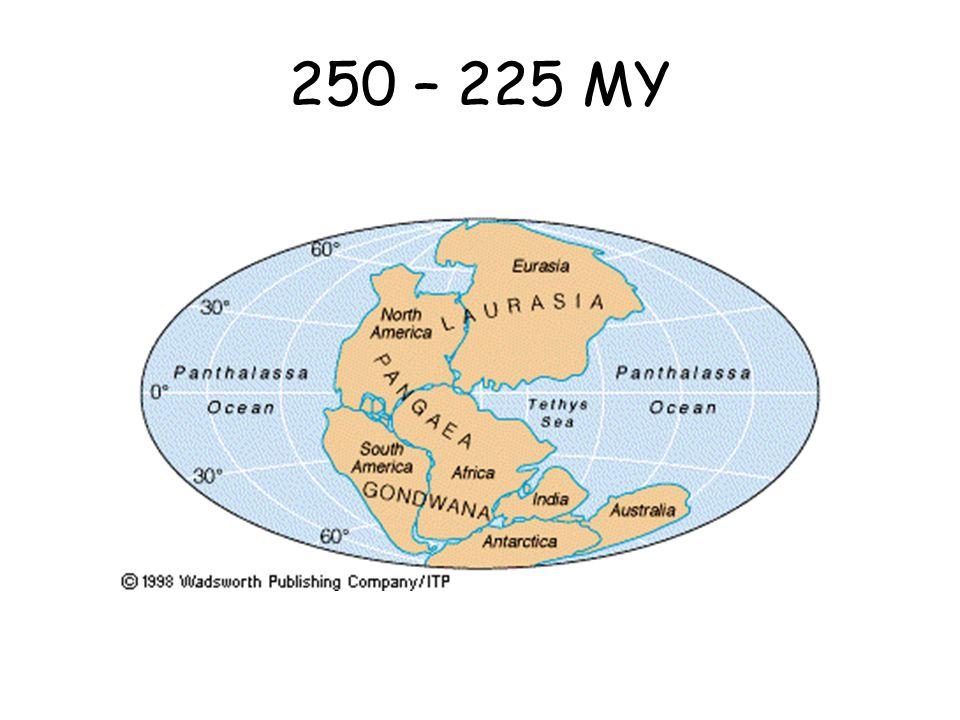 250 – 225 MY