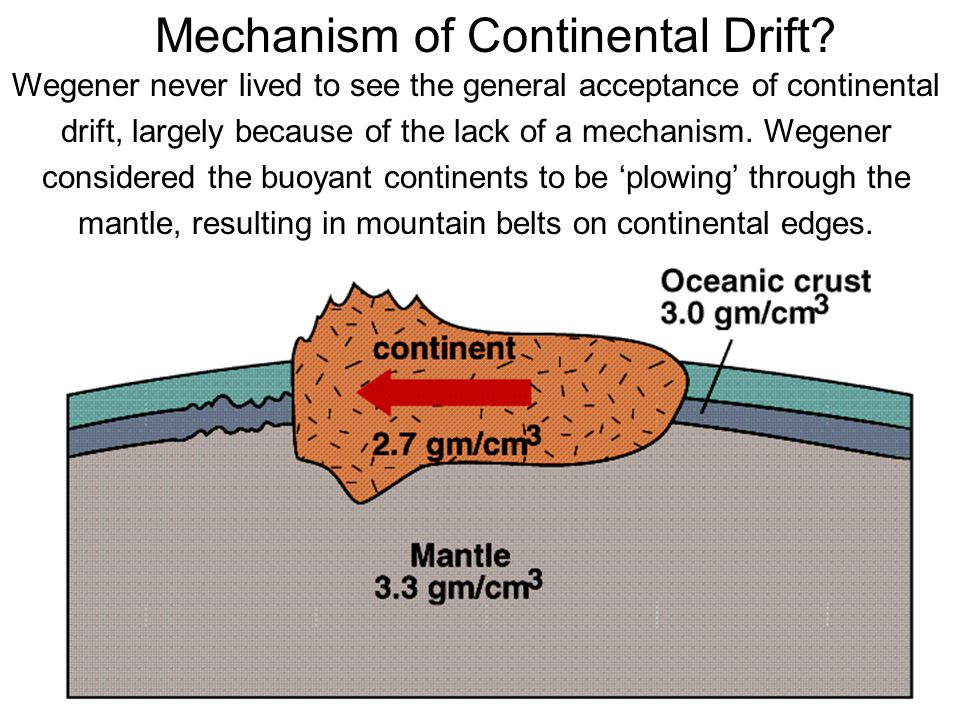 Mechanism of Continental Drift? Wegener never lived to see the general acceptance of continental drift, largely because of the lack of a mechanism. We