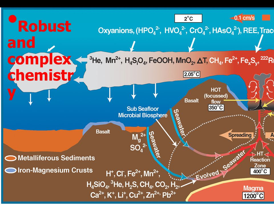 www.pmel.noaa.gov/vents Robust and complex chemistr y