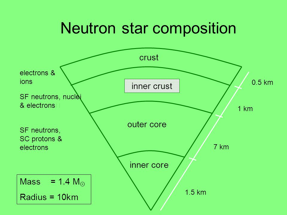 Neutron star composition 1.5 km inner core outer core crust inner crust 7 km 1 km 0.5 km electrons & ions SF neutrons, nuclei & electrons SF neutrons,