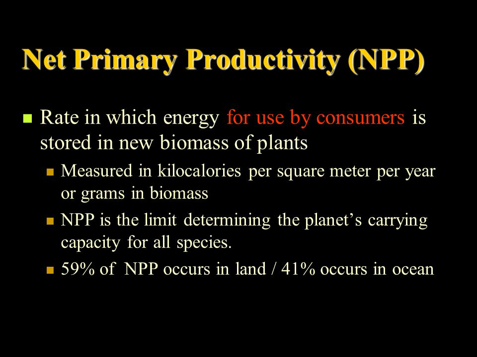 Gross Primary Productivity (GPP) Rate in which producers convert solar energy into chemical energy (biomass) in a given amount of time