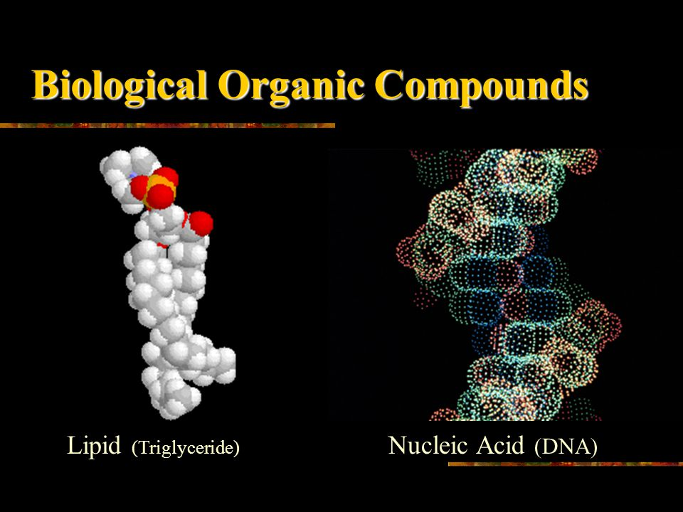 Biological Organic Compounds Carbohydrates (Glucose) Protein (Cytochrome P450)