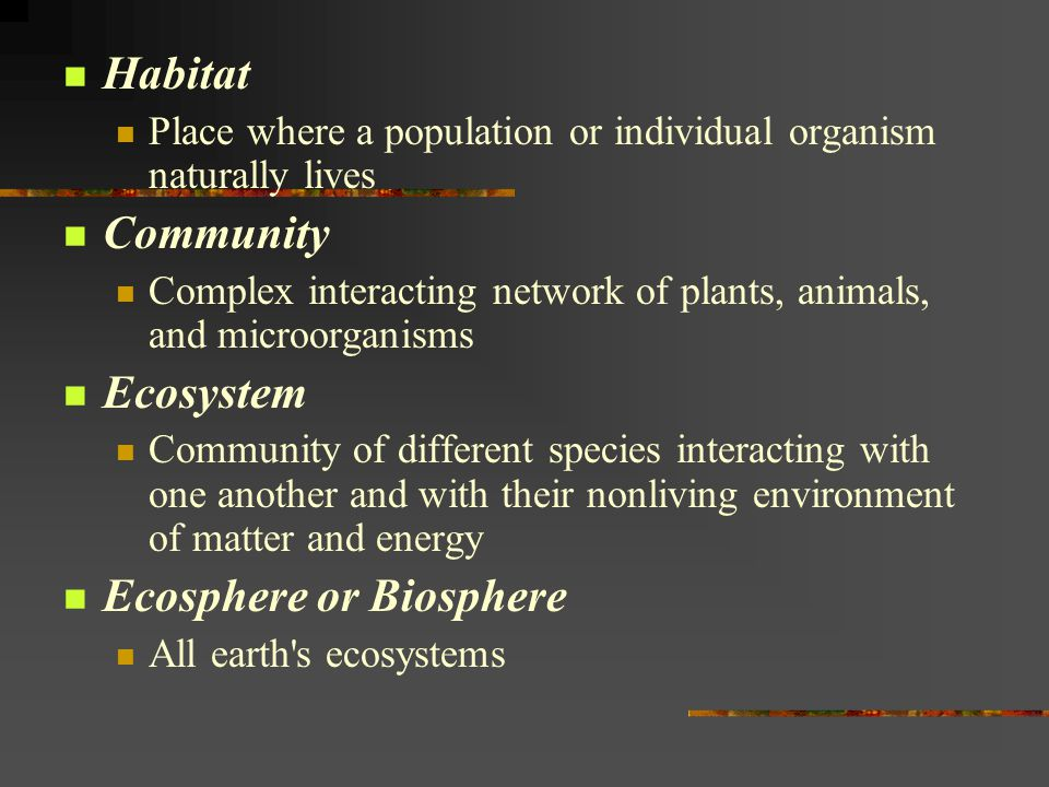 Vocabulary Population Group of interacting individuals of the same species that occupy a specific area at the same time Genetic Diversity Populations