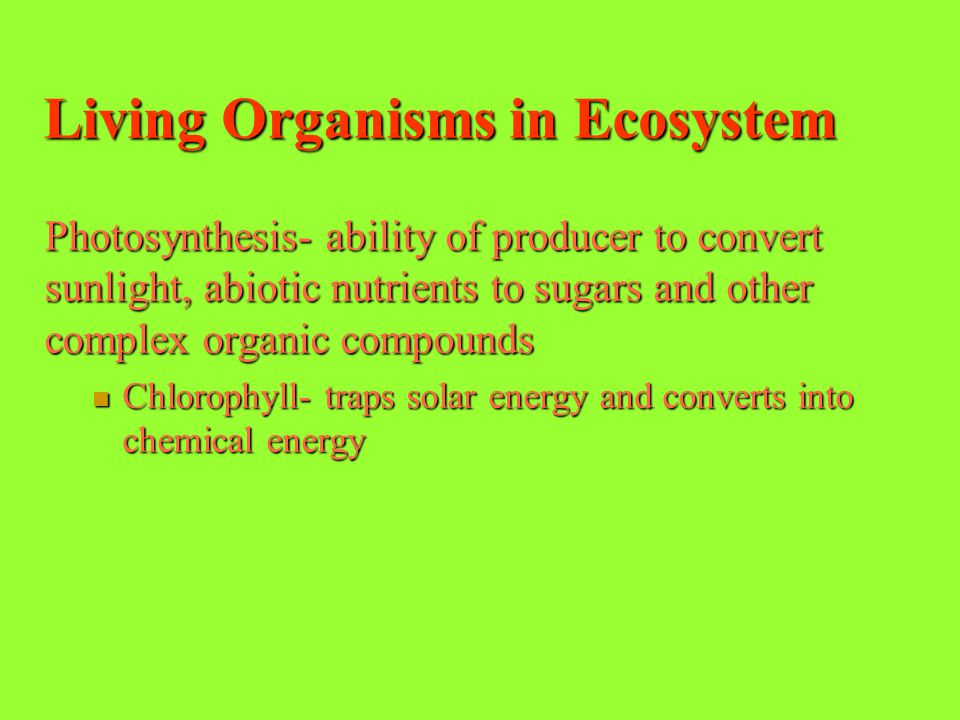 Living Organisms in Ecosystem Producers or autotrophs- makes their own food from compound obtained from environment. Ex: plant gets energy or food fro