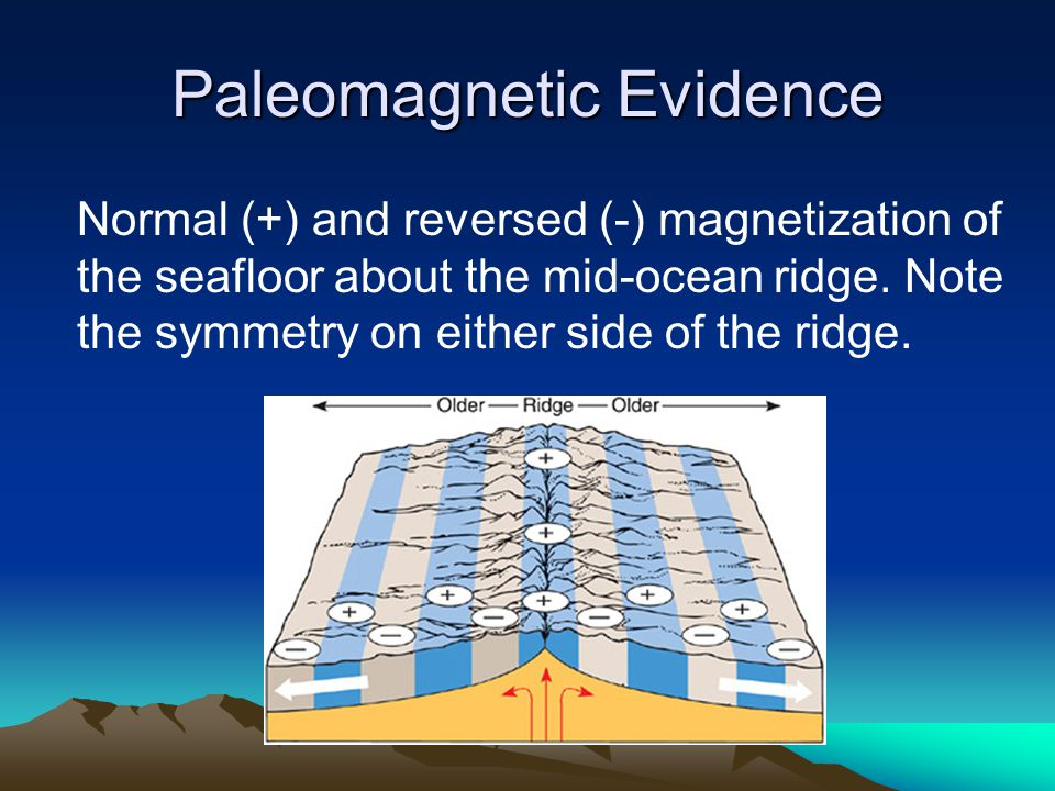 Paleomagnetic Evidence Normal (+) and reversed (-) magnetization of the seafloor about the mid-ocean ridge. Note the symmetry on either side of the ri