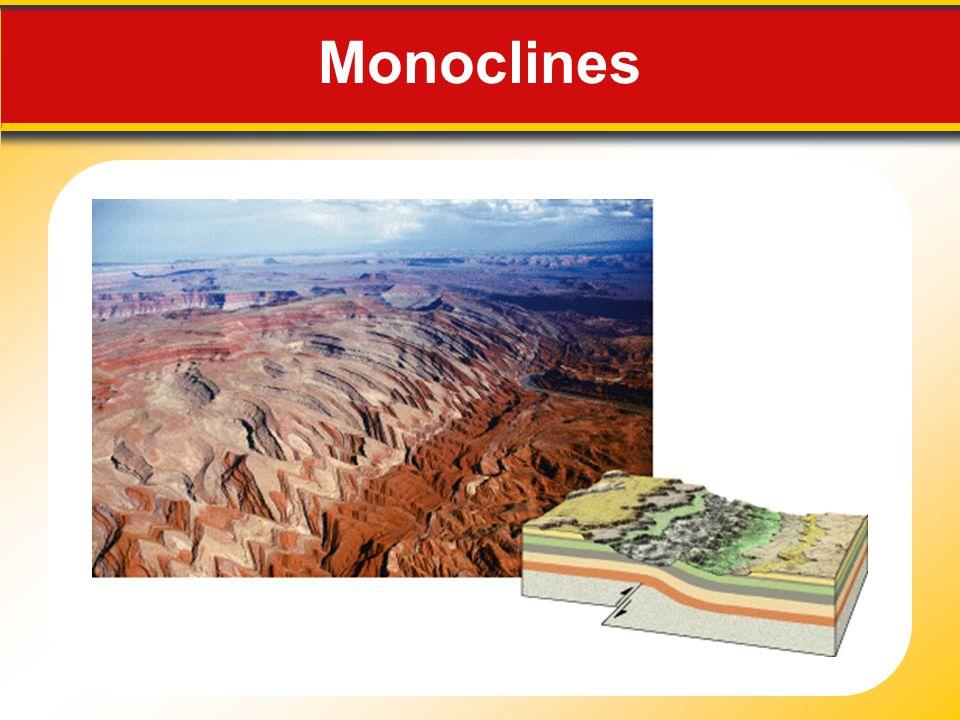 Monoclines