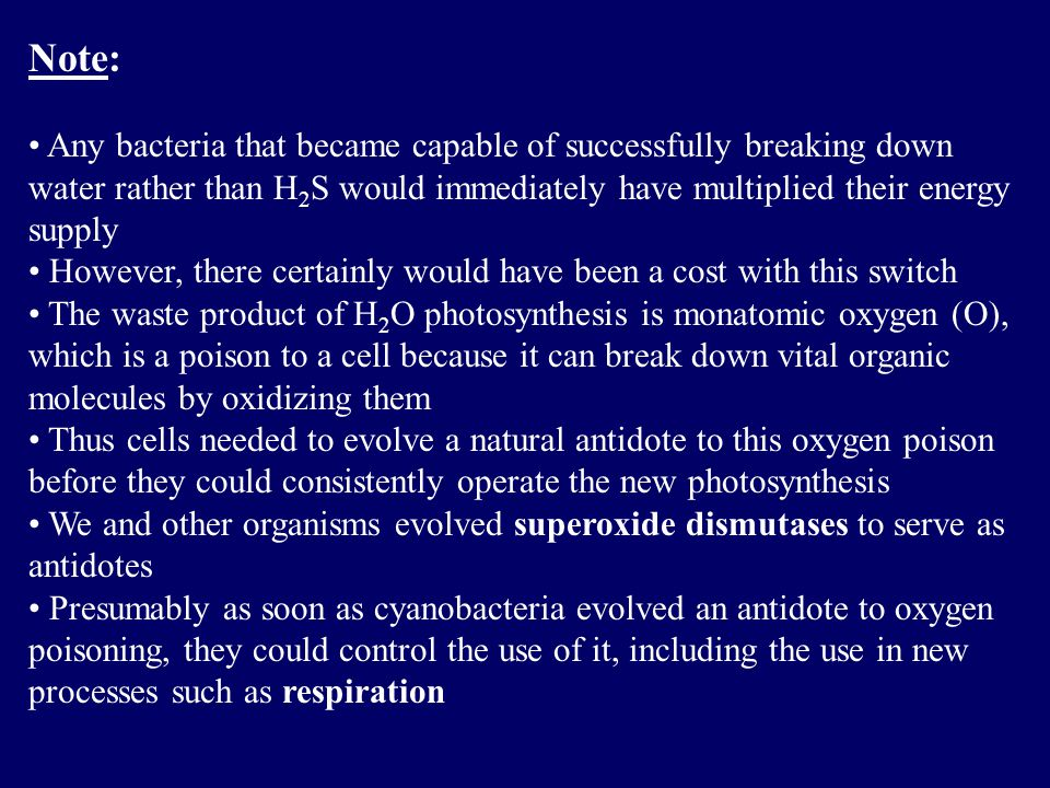 Note: Any bacteria that became capable of successfully breaking down water rather than H 2 S would immediately have multiplied their energy supply However, there certainly would have been a cost with this switch The waste product of H 2 O photosynthesis is monatomic oxygen (O), which is a poison to a cell because it can break down vital organic molecules by oxidizing them Thus cells needed to evolve a natural antidote to this oxygen poison before they could consistently operate the new photosynthesis We and other organisms evolved superoxide dismutases to serve as antidotes Presumably as soon as cyanobacteria evolved an antidote to oxygen poisoning, they could control the use of it, including the use in new processes such as respiration