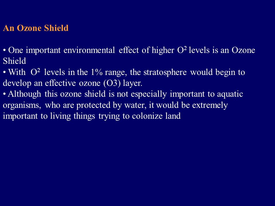 An Ozone Shield One important environmental effect of higher O 2 levels is an Ozone Shield With O 2 levels in the 1% range, the stratosphere would begin to develop an effective ozone (O3) layer.