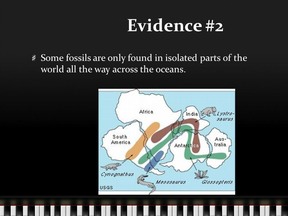 Evidence #2 Some fossils are only found in isolated parts of the world all the way across the oceans.