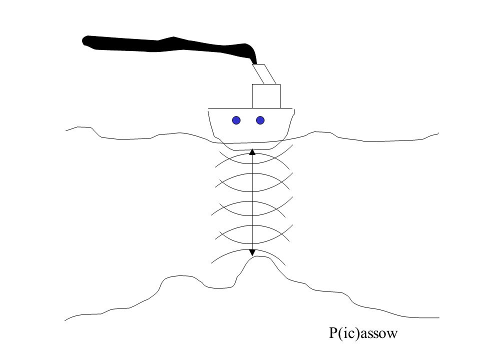 P(ic)assow