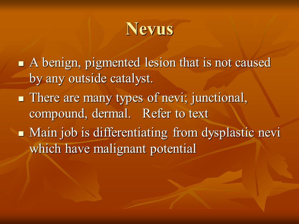 Seborreic Keratosis Most common benign cutaneous neoplasm Most common benign cutaneous neoplasm Origin unknown Origin unknown No malignant potential N