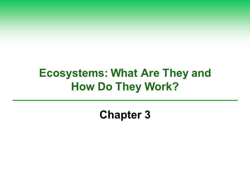 Ecosystems: What Are They and How Do They Work? Chapter 3