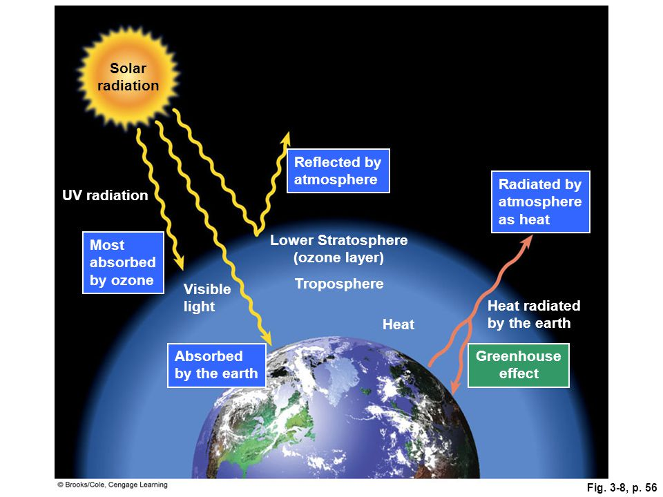 Fig. 3-8, p. 56 Lower Stratosphere (ozone layer) Solar radiation UV radiation Visible light Heat radiated by the earth Most absorbed by ozone Absorbed