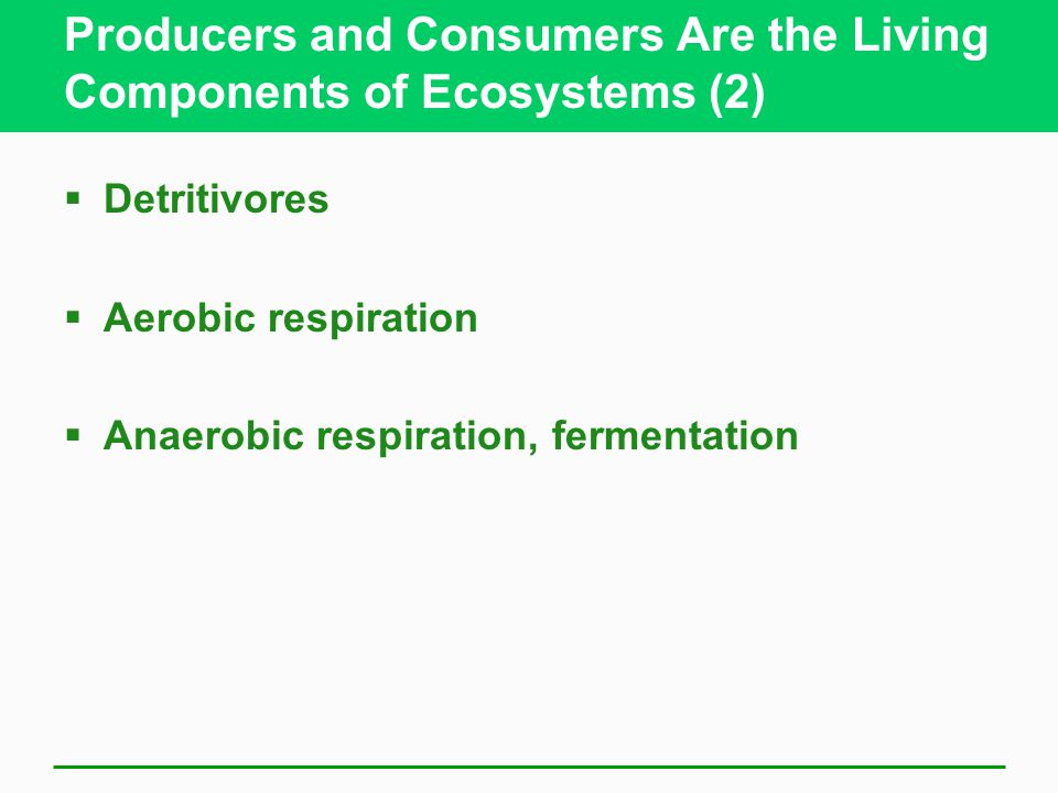 Producers and Consumers Are the Living Components of Ecosystems (2)  Detritivores  Aerobic respiration  Anaerobic respiration, fermentation