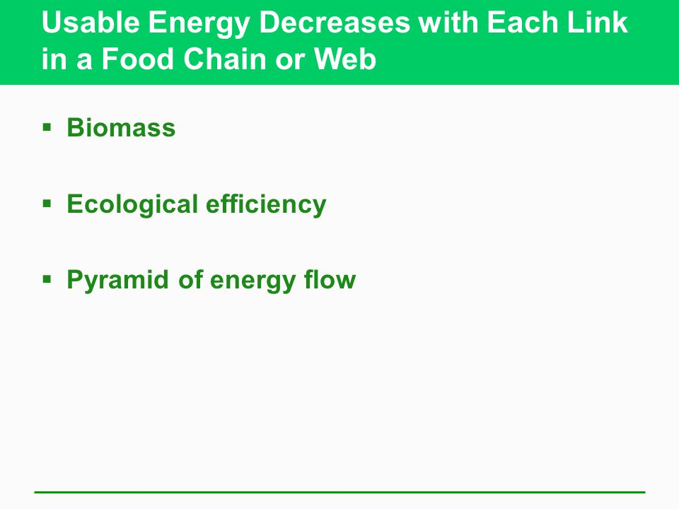 Usable Energy Decreases with Each Link in a Food Chain or Web  Biomass  Ecological efficiency  Pyramid of energy flow