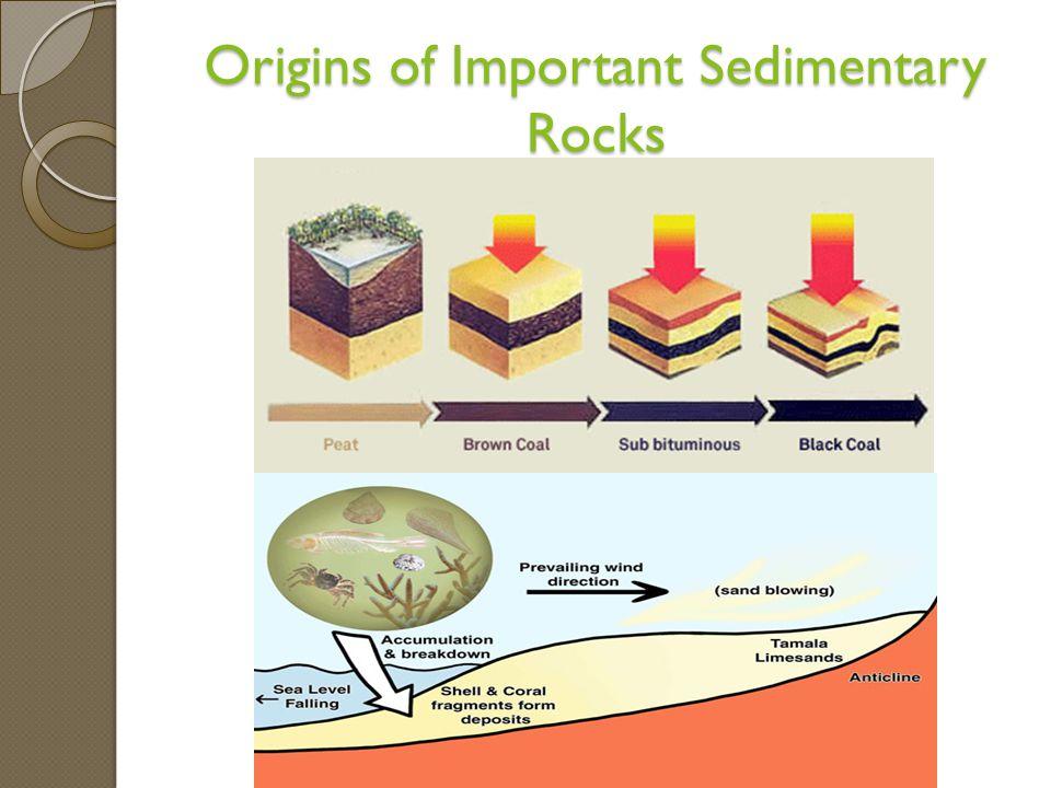 Origins of Important Sedimentary Rocks