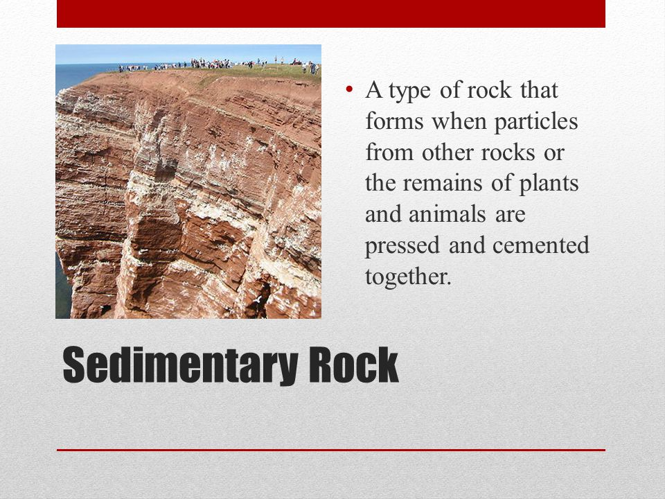 Sedimentary Rock A type of rock that forms when particles from other rocks or the remains of plants and animals are pressed and cemented together.