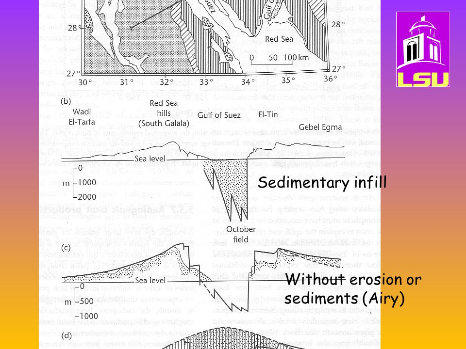 Induced mantl convection (Rift-flank- uplift) Sedimentary infill Without erosion or sediments (Airy)