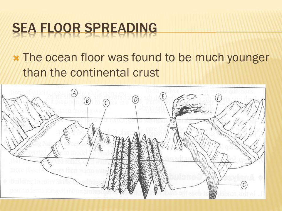  The ocean floor was found to be much younger than the continental crust
