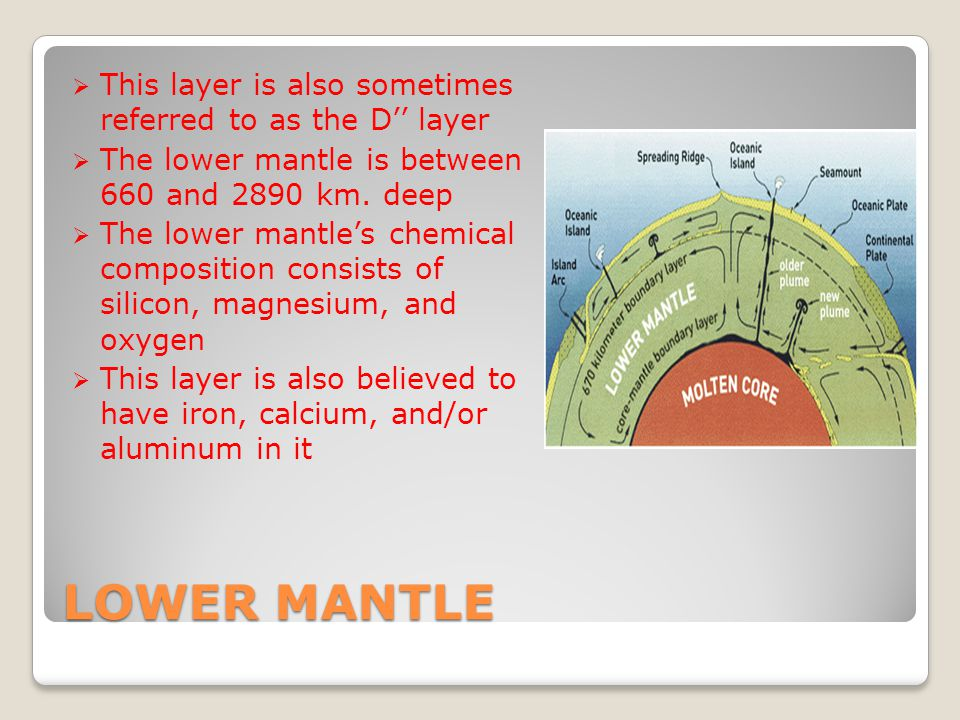 LOWER MANTLE  This layer is also sometimes referred to as the D'' layer  The lower mantle is between 660 and 2890 km.