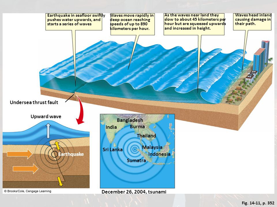 Fig. 14-11, p. 352 Earthquake in seafloor swiftly pushes water upwards, and starts a series of waves Waves move rapidly in deep ocean reaching speeds