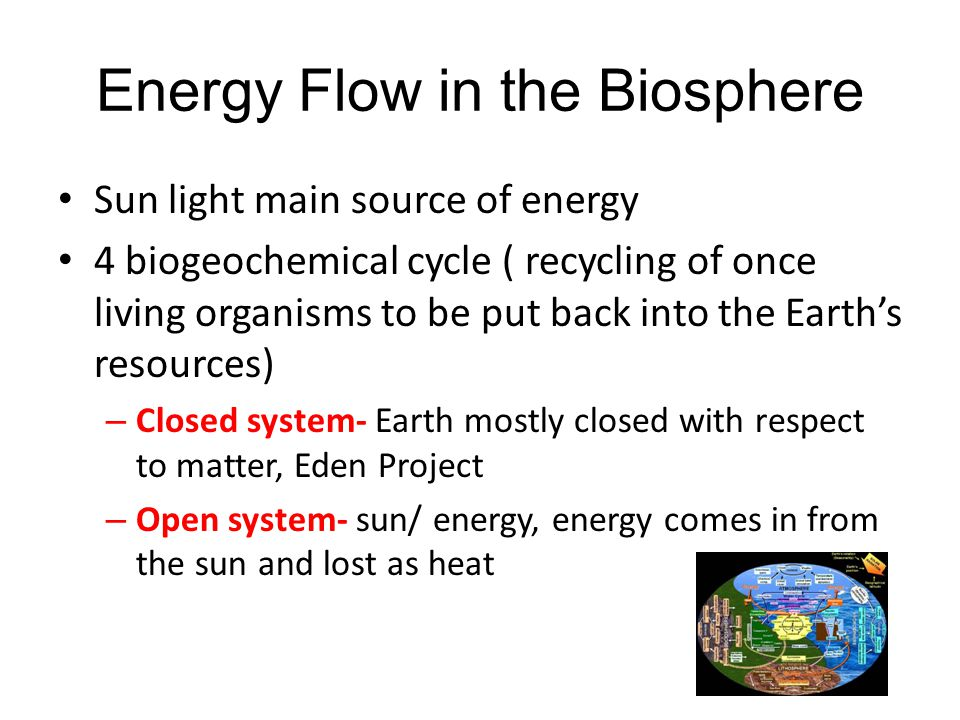 Energy Flow in the Biosphere Sun light main source of energy 4 biogeochemical cycle ( recycling of once living organisms to be put back into the Earth