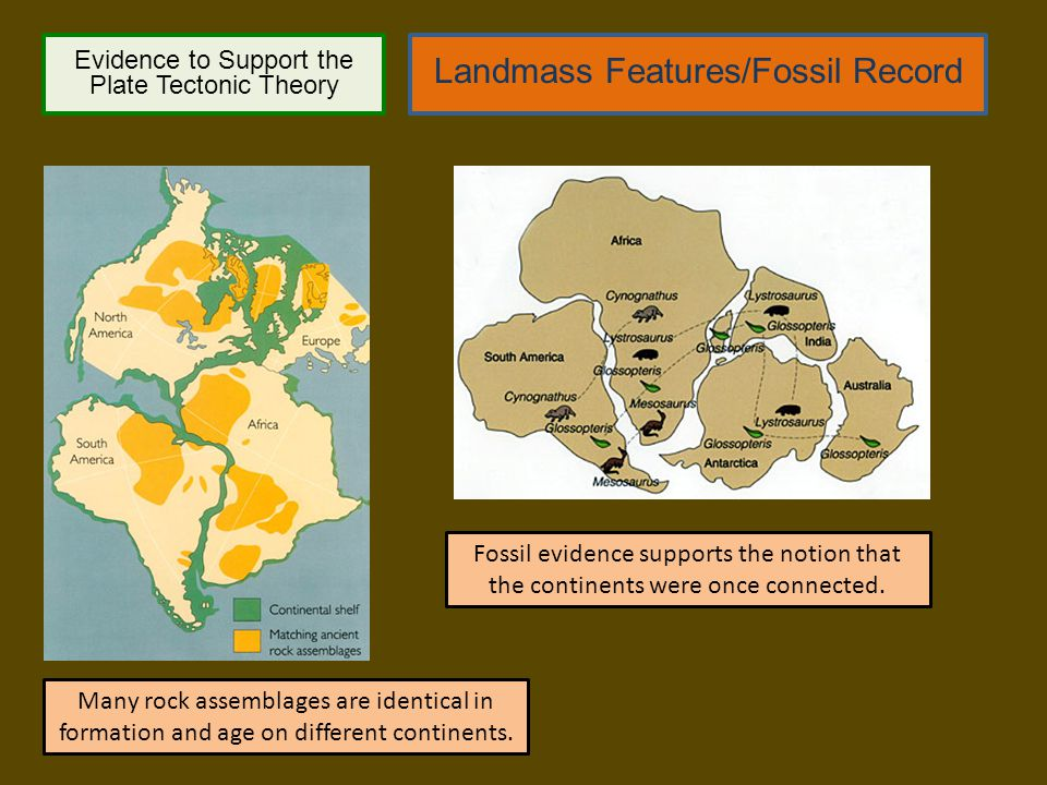 Evidence to Support the Plate Tectonic Theory Landmass Features/Fossil Record Many rock assemblages are identical in formation and age on different co
