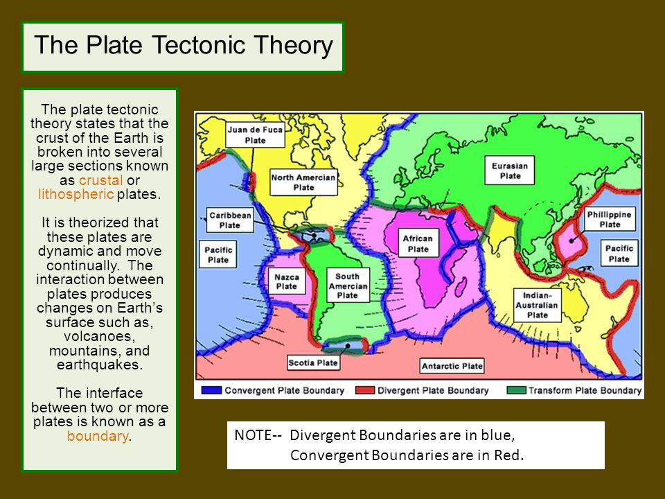 Evidence to Support the Plate Tectonic Theory Magnetic Polarity Earth's magnetic field has reversed its polarity many times in Earth's history.