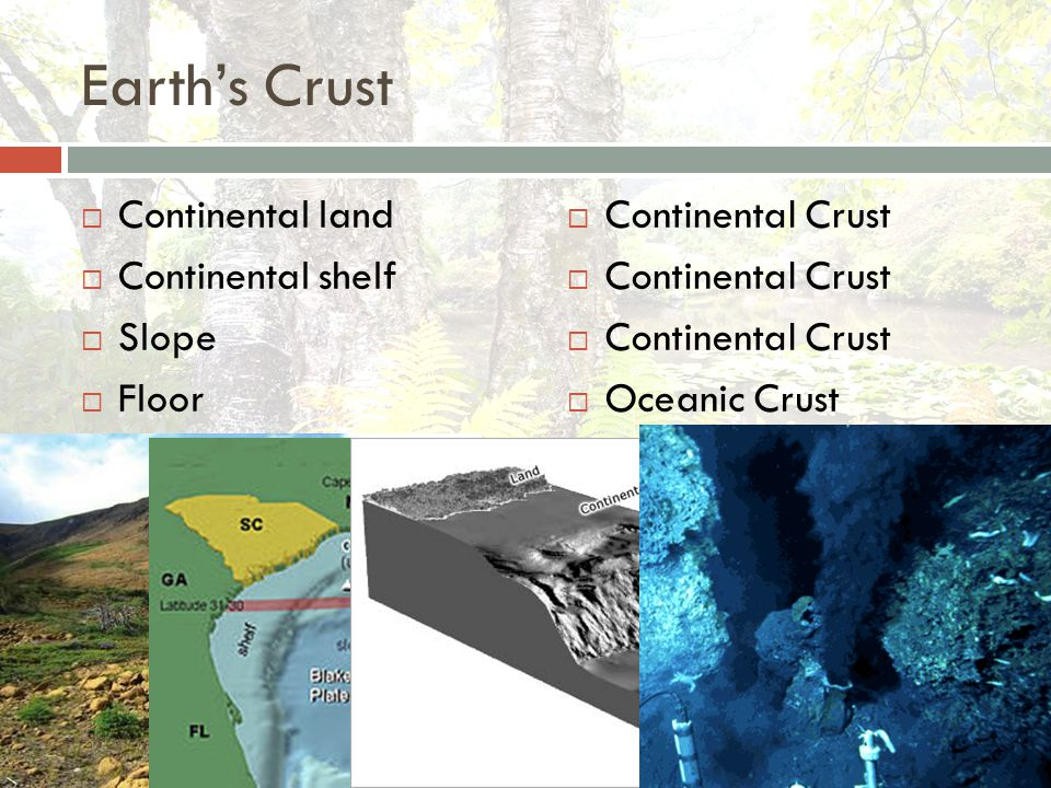 Earth's Crust  Continental land  Continental shelf  Slope  Floor  Continental Crust  Oceanic Crust