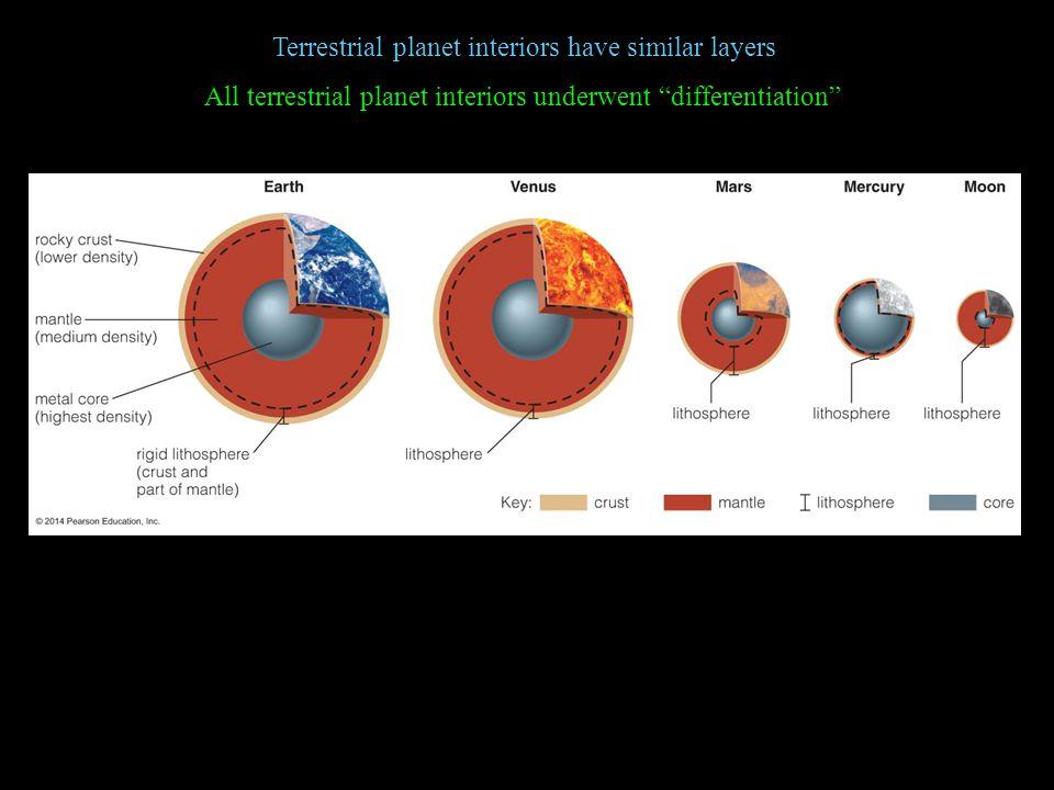 Terrestrial planet interiors have similar layers All terrestrial planet interiors underwent differentiation