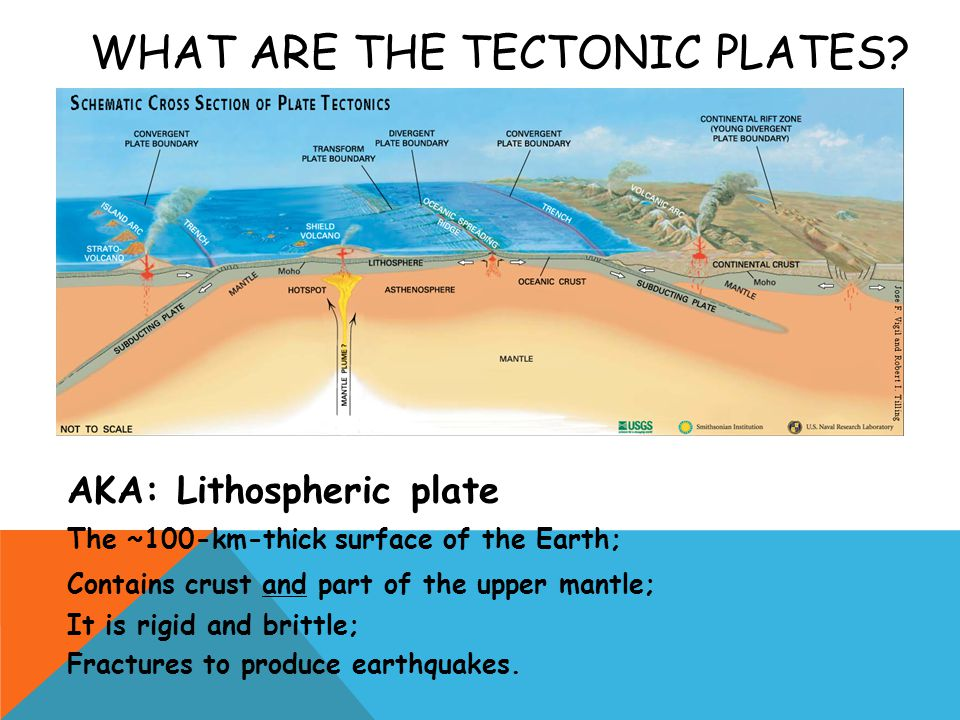 WHAT ARE THE TECTONIC PLATES? AKA: Lithospheric plate The ~100-km-thick surface of the Earth; Contains crust and part of the upper mantle; It is rigid