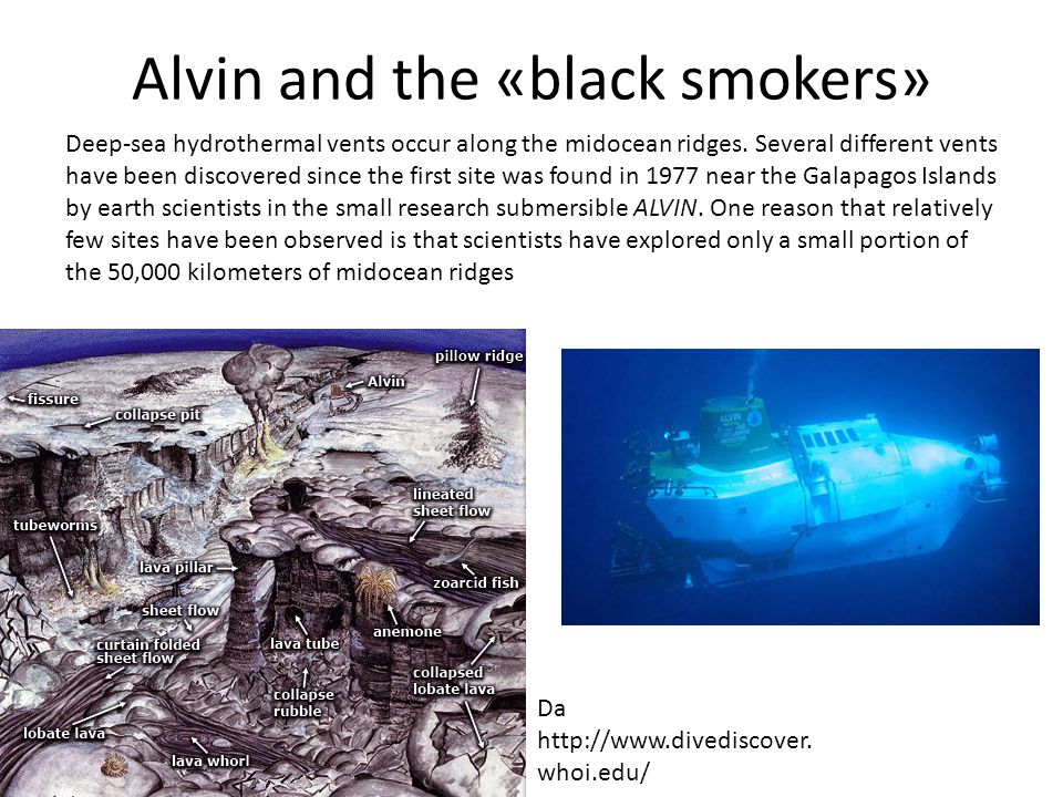 Alvin and the «black smokers» Deep-sea hydrothermal vents occur along the midocean ridges.