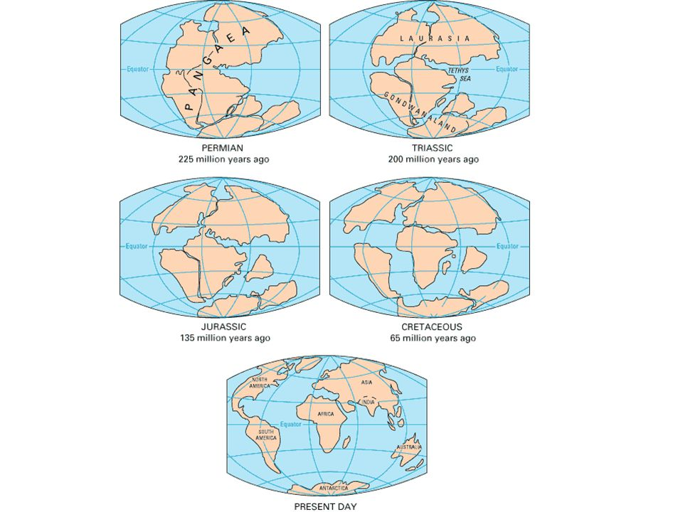 Evidence for Wegener's Idea Rock types on the east coast of North America MATCH EXACTLY the rocks in the British Isles, Scandinavia, and Africa