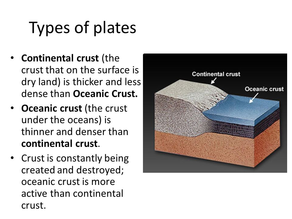 Types of plates Continental crust (the crust that on the surface is dry land) is thicker and less dense than Oceanic Crust.