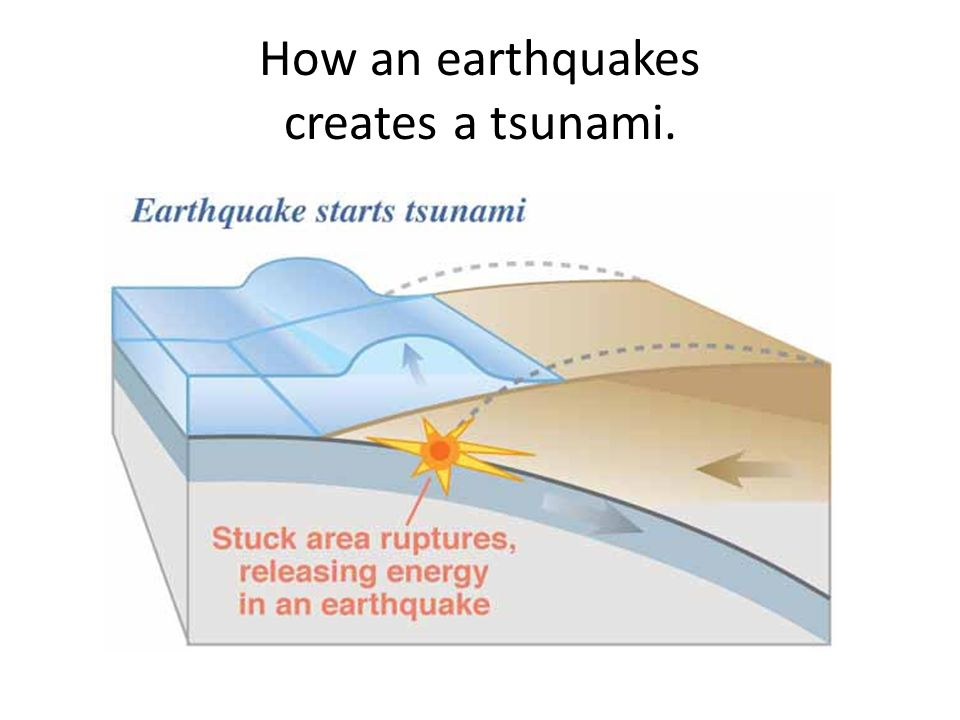 How an earthquakes creates a tsunami.