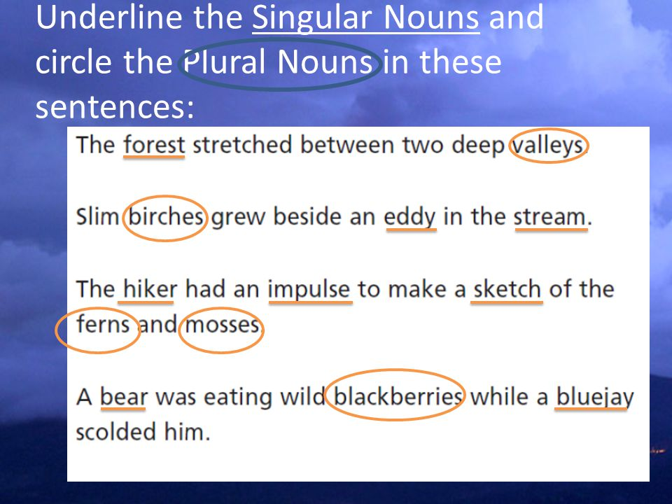 Underline the Singular Nouns and circle the Plural Nouns in these sentences: