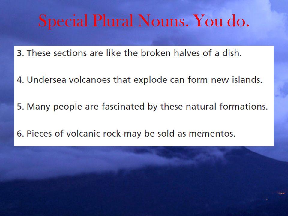 Special Plural Nouns. You do.
