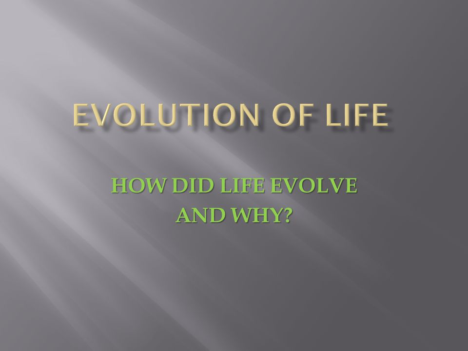 HOW DID LIFE EVOLVE AND WHY?