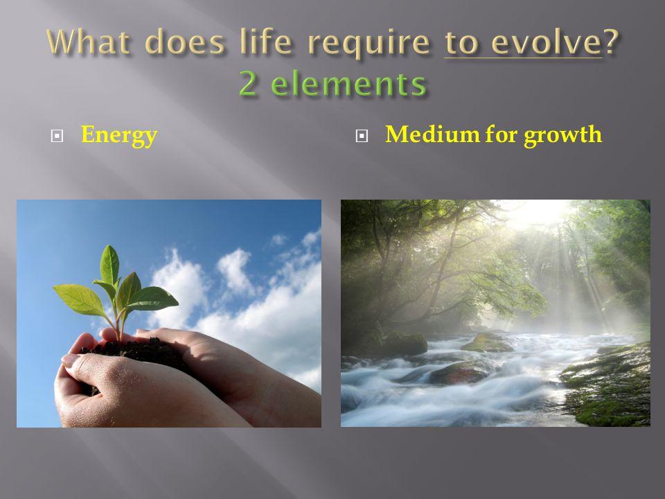  Energy  Medium for growth