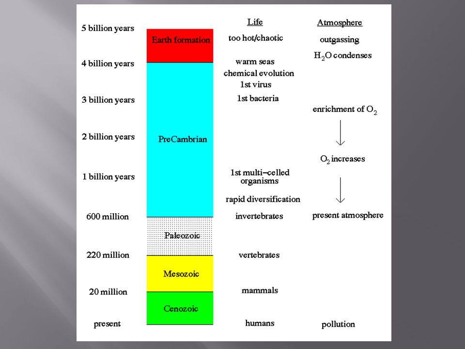 The origin of life B.The origin of life 1.