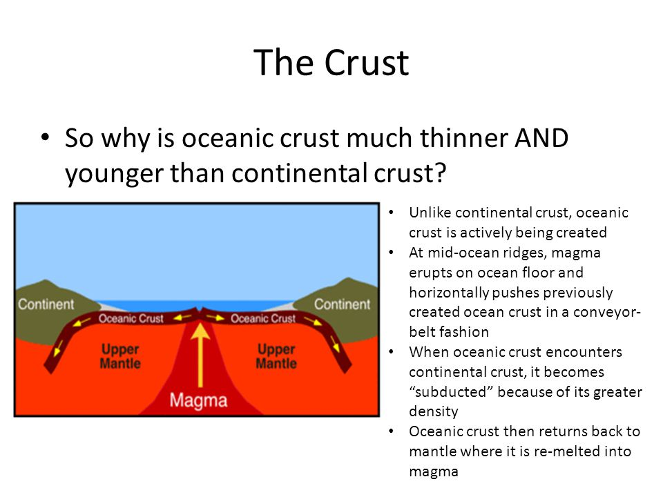 The Crust So why is oceanic crust much thinner AND younger than continental crust.