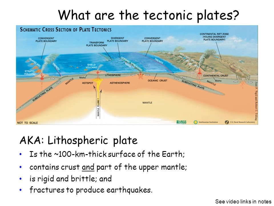 What are the tectonic plates.
