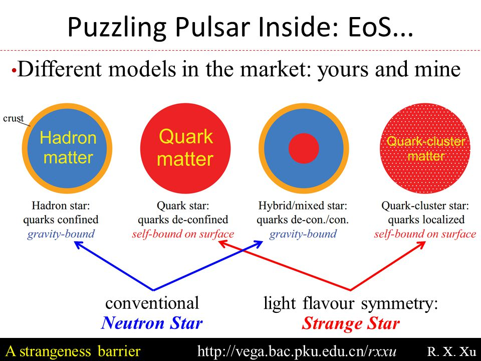 Puzzling Pulsar Inside: EoS... Different models in the market: yours and mine conventional Neutron Star light flavour symmetry: Strange Star