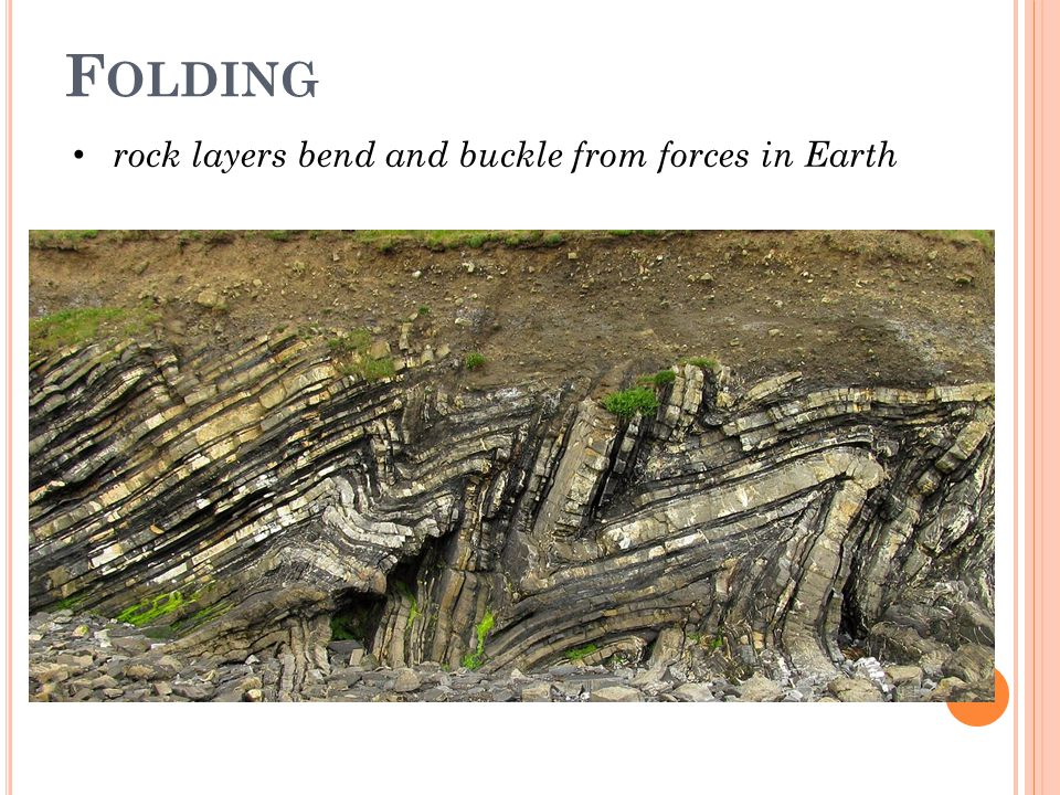 F OLDING rock layers bend and buckle from forces in Earth