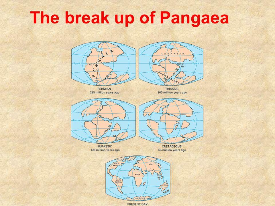 The break up of Pangaea