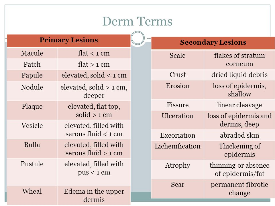 Derm Terms Primary Lesions Maculeflat < 1 cm Patchflat > 1 cm Papuleelevated, solid < 1 cm Noduleelevated, solid > 1 cm, deeper Plaqueelevated, flat top, solid > 1 cm Vesicleelevated, filled with serous fluid < 1 cm Bullaelevated, filled with serous fluid > 1 cm Pustuleelevated, filled with pus < 1 cm WhealEdema in the upper dermis Secondary Lesions Scaleflakes of stratum corneum Crustdried liquid debris Erosionloss of epidermis, shallow Fissurelinear cleavage Ulcerationloss of epidermis and dermis, deep Excoriationabraded skin LichenificationThickening of epidermis Atrophythinning or absence of epidermis/fat Scarpermanent fibrotic change